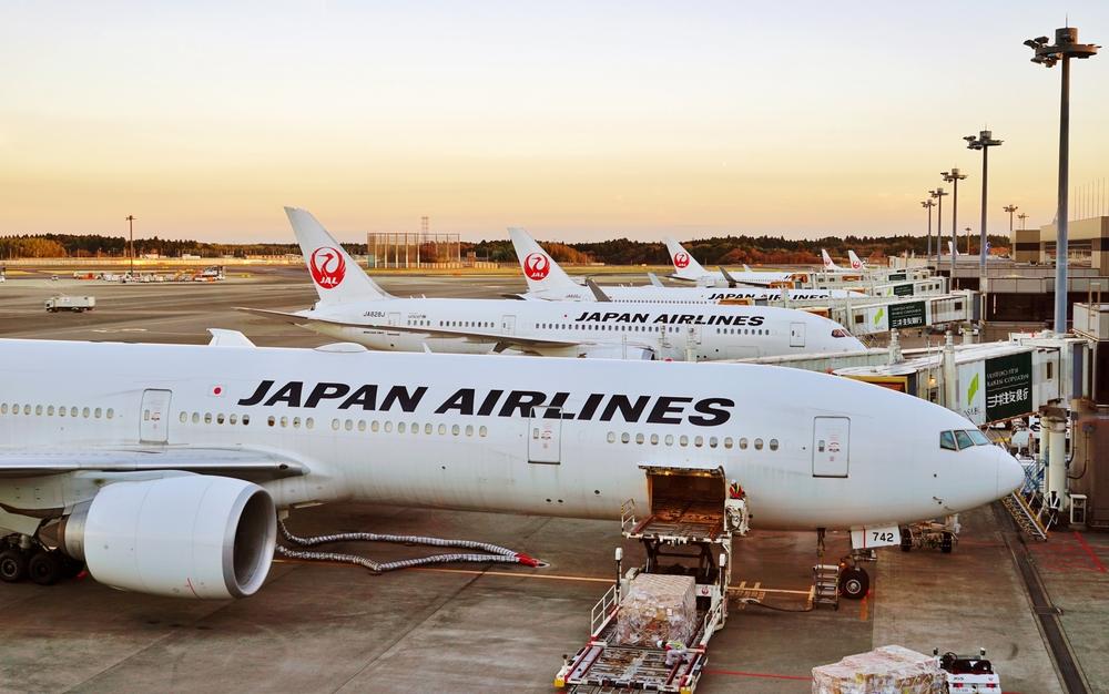 Resultado de imagen para japan airlines fleet