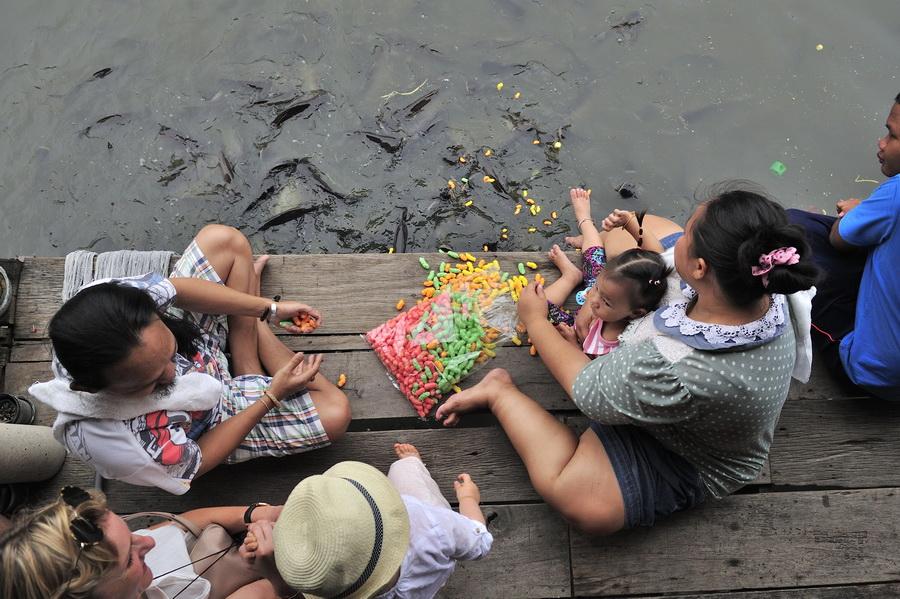Feeding the fish on BKK river