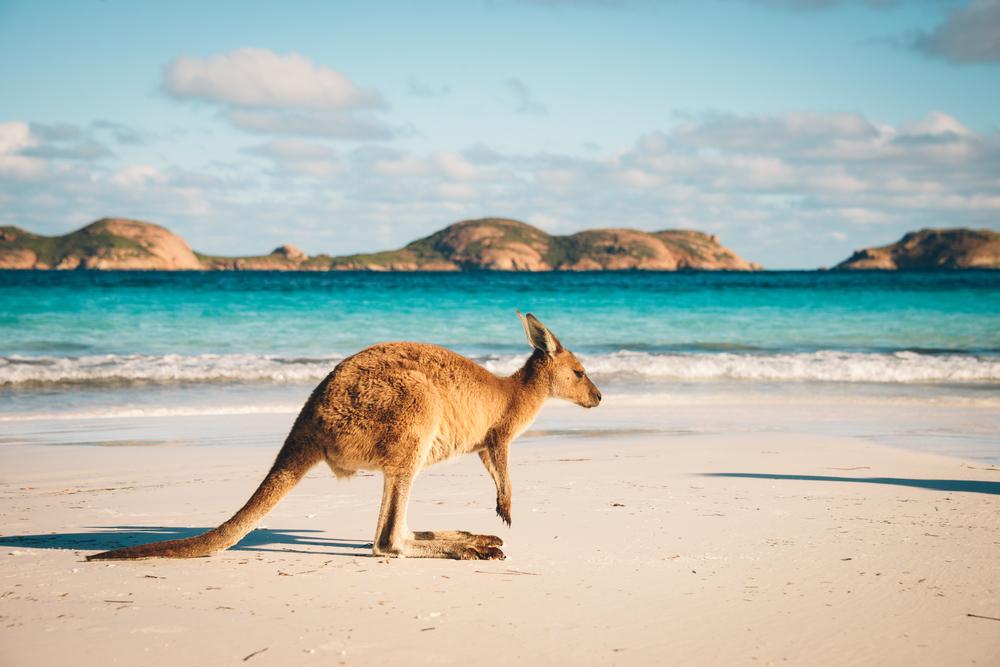 WMB Travel Pro australia-tourism The state of Australia's tourism sector