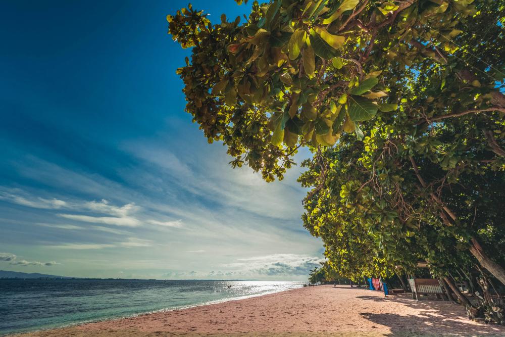 Travel Junkie pink-sand-beach-zamboanga Protected: Debunking 5 myths about travelling to Zamboanga